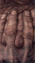 Anatomia © 2008 Vania Comoretti
